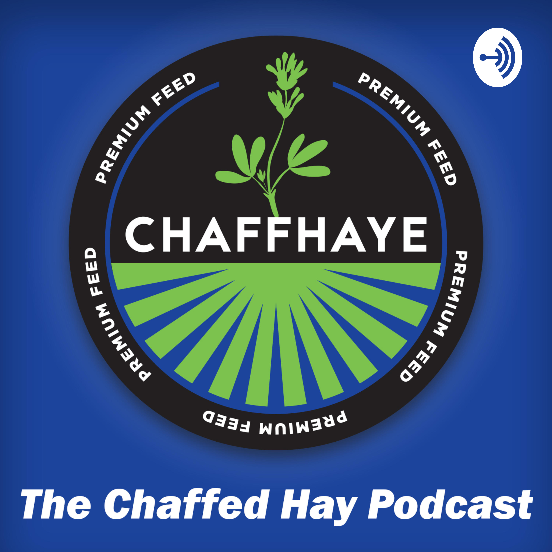 The Chaffed Hay