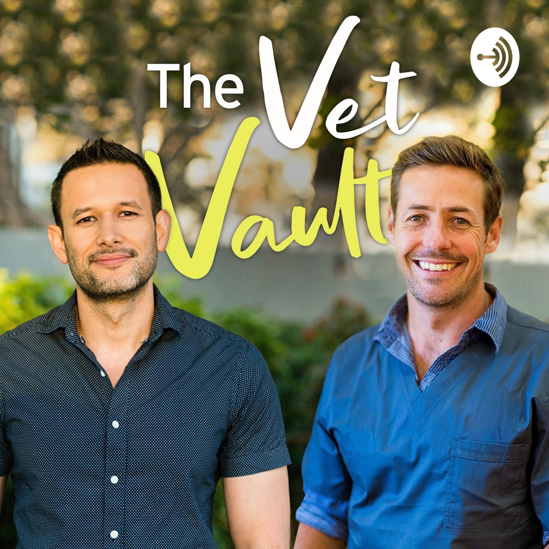 #1: Welcome to the Vet Vault - Gerardo and Hubert