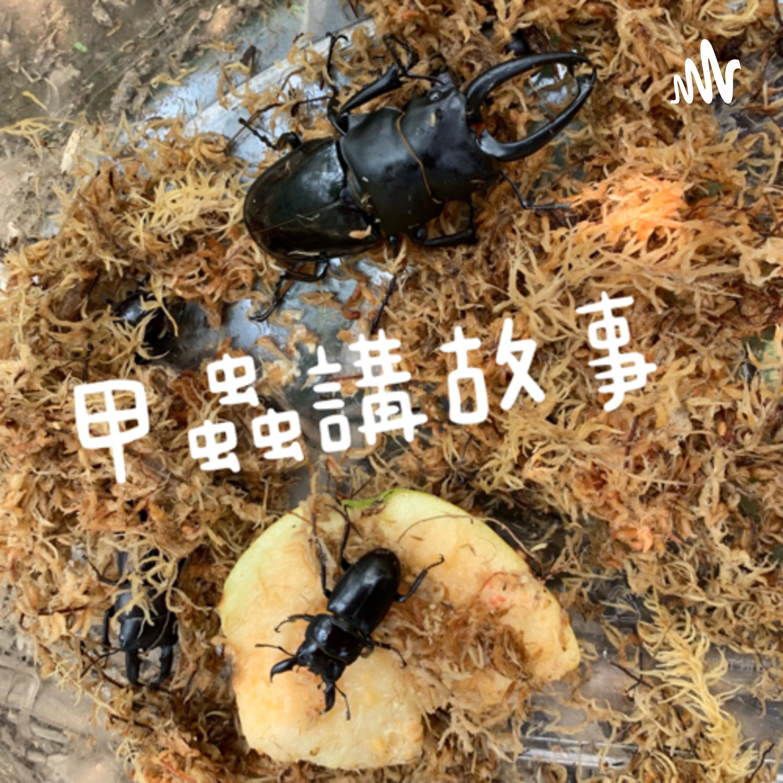 甲蟲講故事