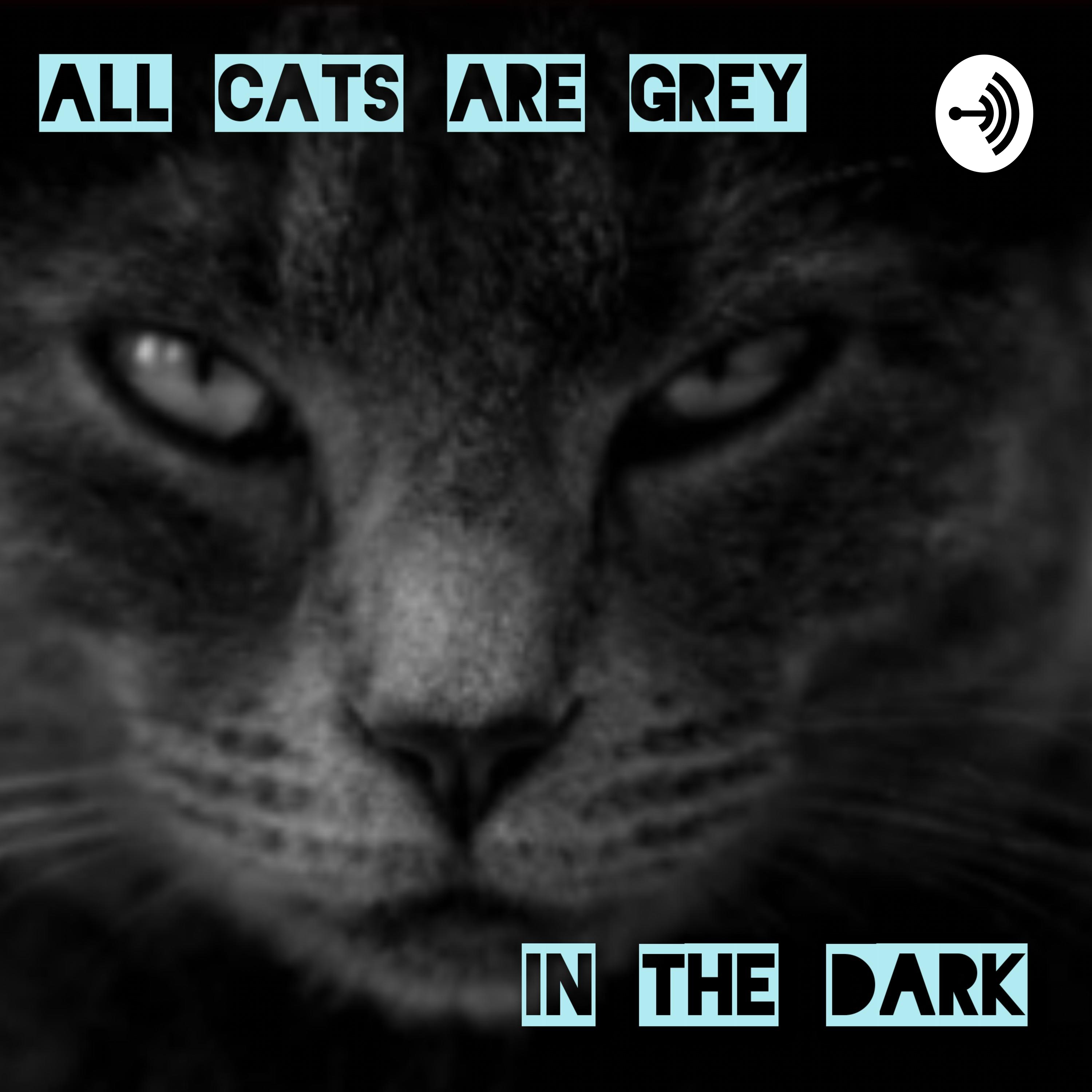 All Cats Are Grey In The Dark | Listen via Stitcher for Podcasts