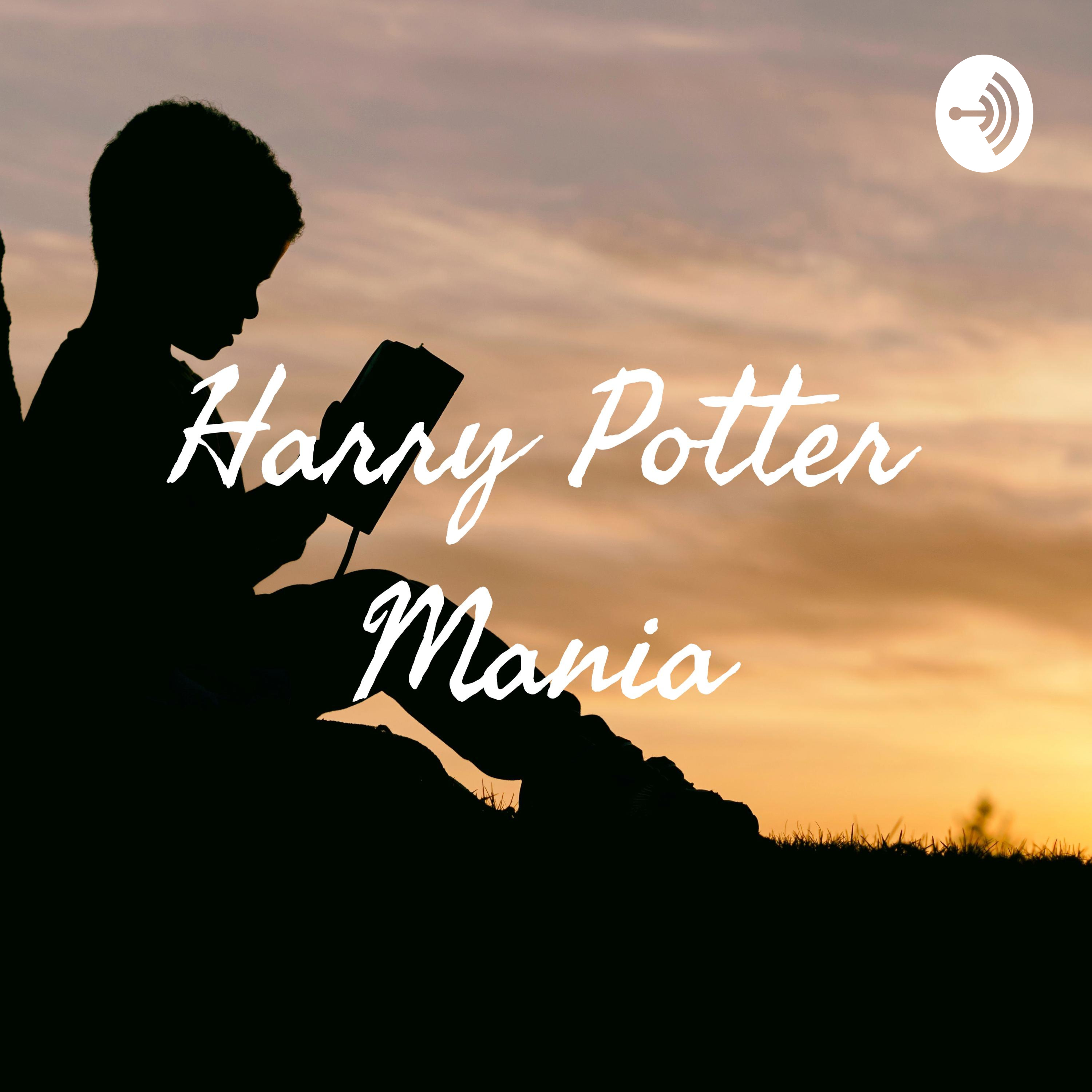 Episode Two: Harry potter and the Chamber of Secrets