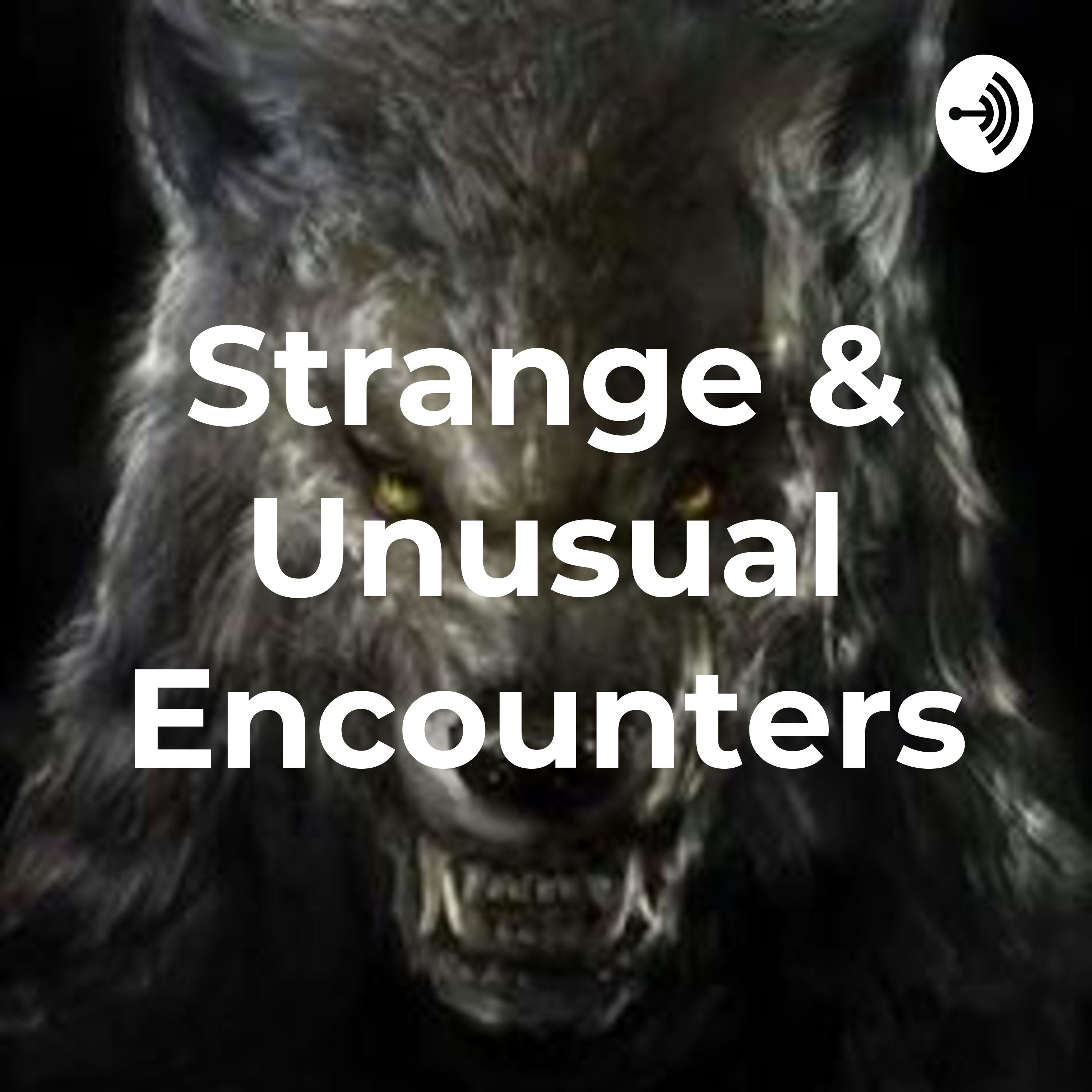 Listener Carrie shares her Bigfoot Encounter & local legends from Western NC