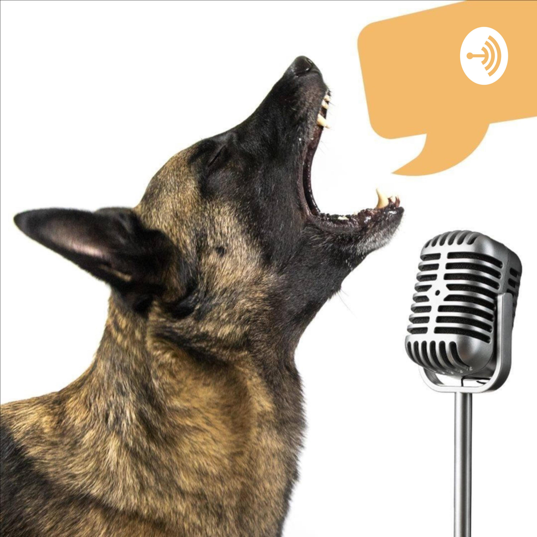 #58 Koirien jalostuksen eettiset ongelmat