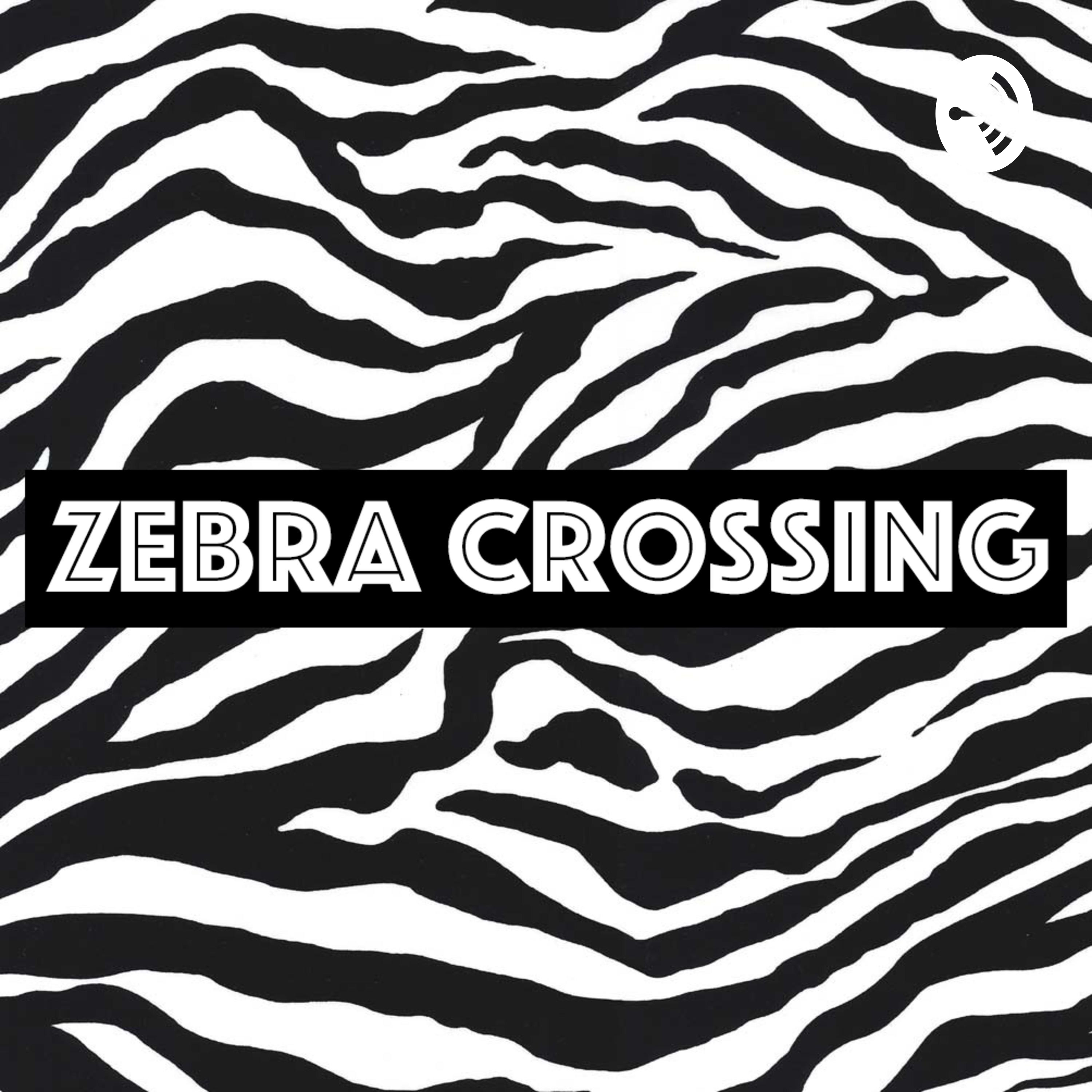 Surgery, Reality TV & Diets | ZEBRA CROSSING EP. 22