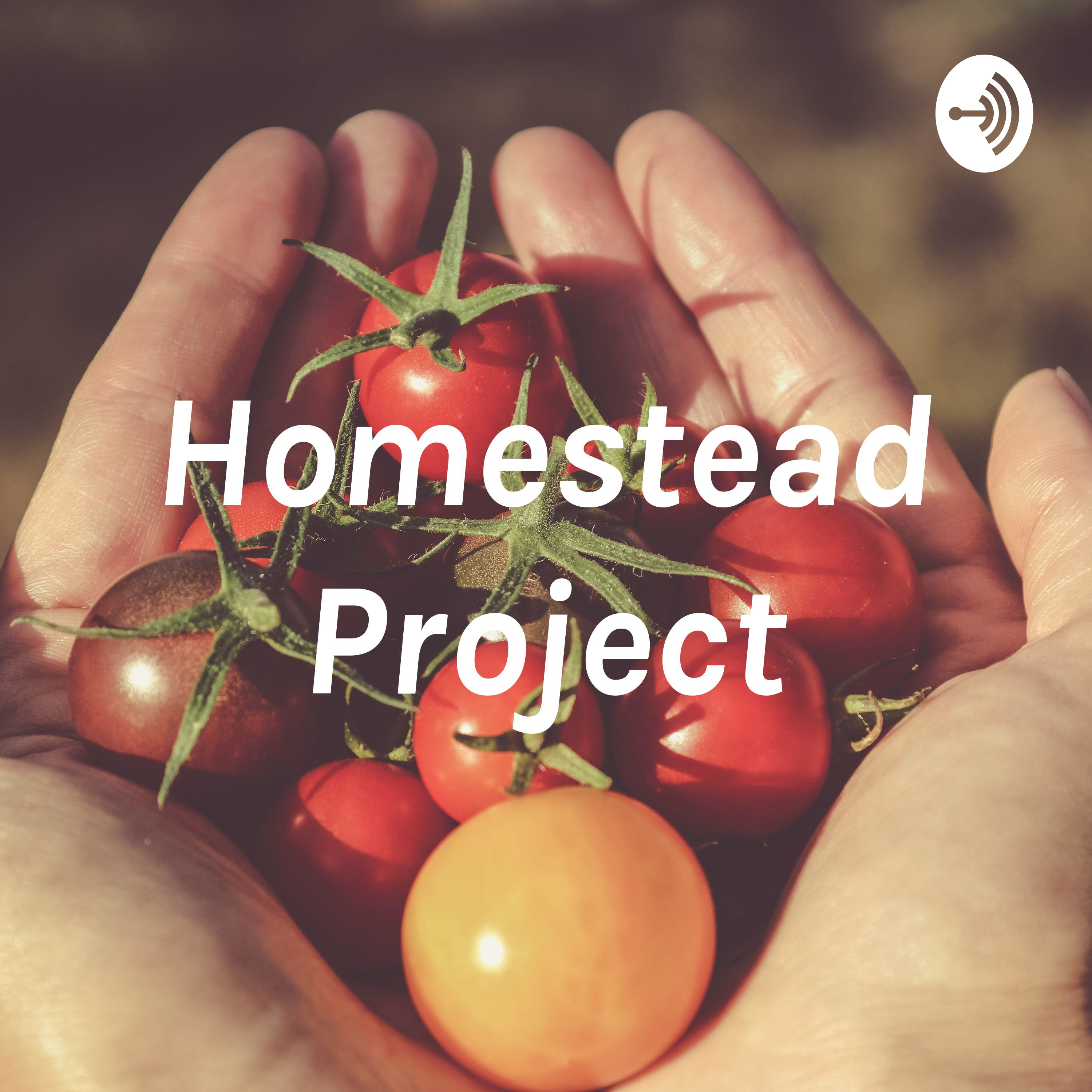 Homestead Project