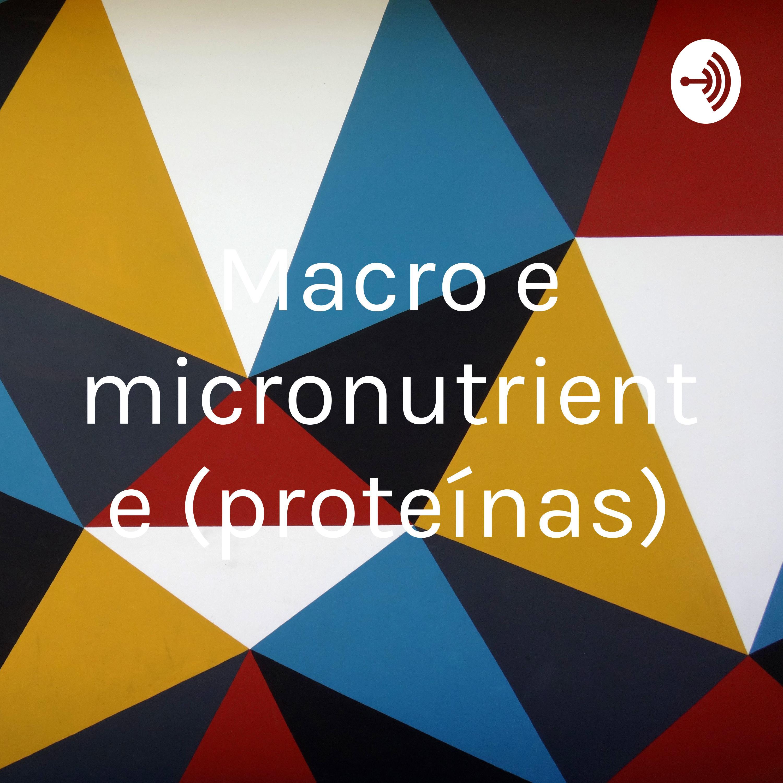 Macro e micronutrientes
