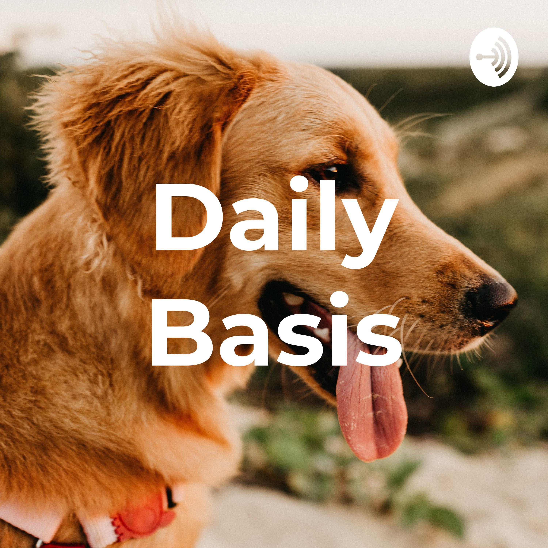 Daily Basis (Trailer)