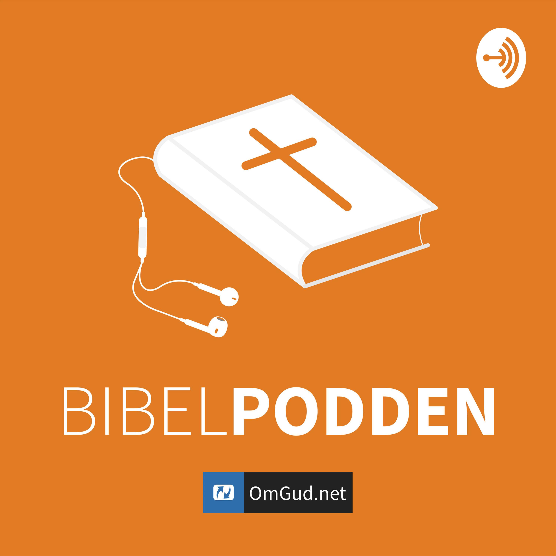 Bibelpod – Episode 49 - Evangeliet etter Lukas 6.12-16