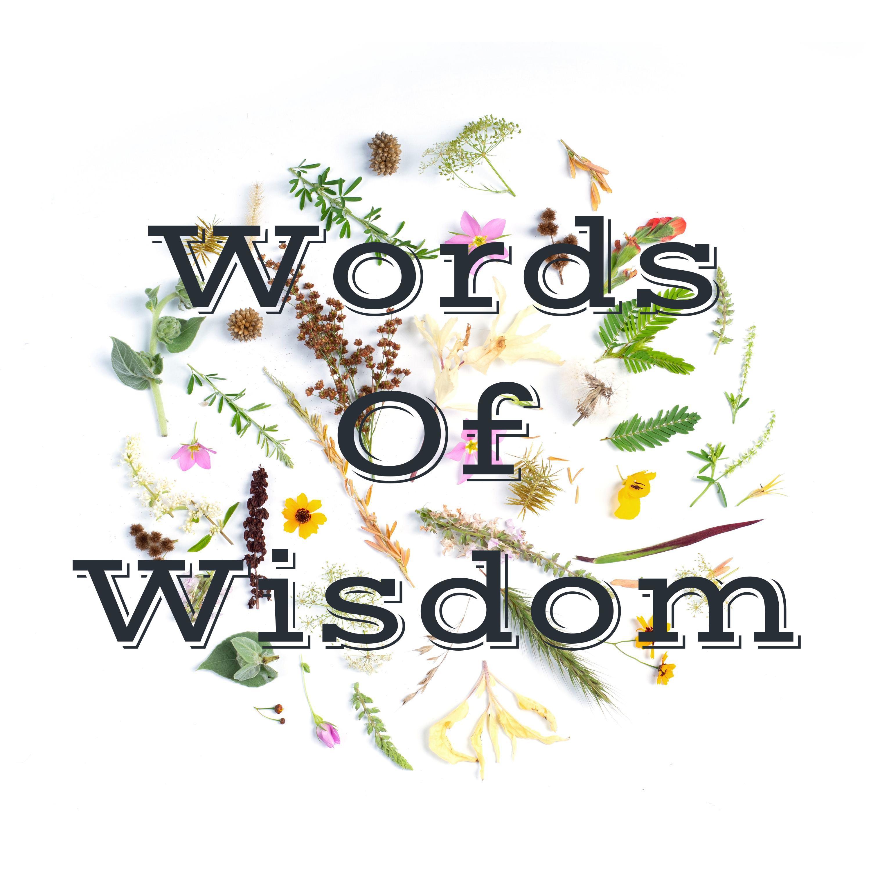 Words Of Wisdom (Trailer)