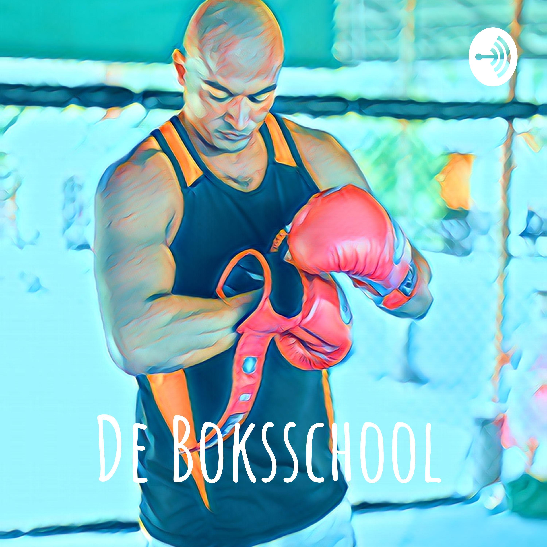De Boksschool logo