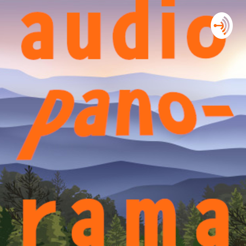 Audio Panorama logo