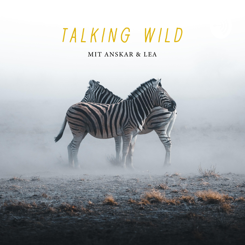 Talking Wild - Die Einführung