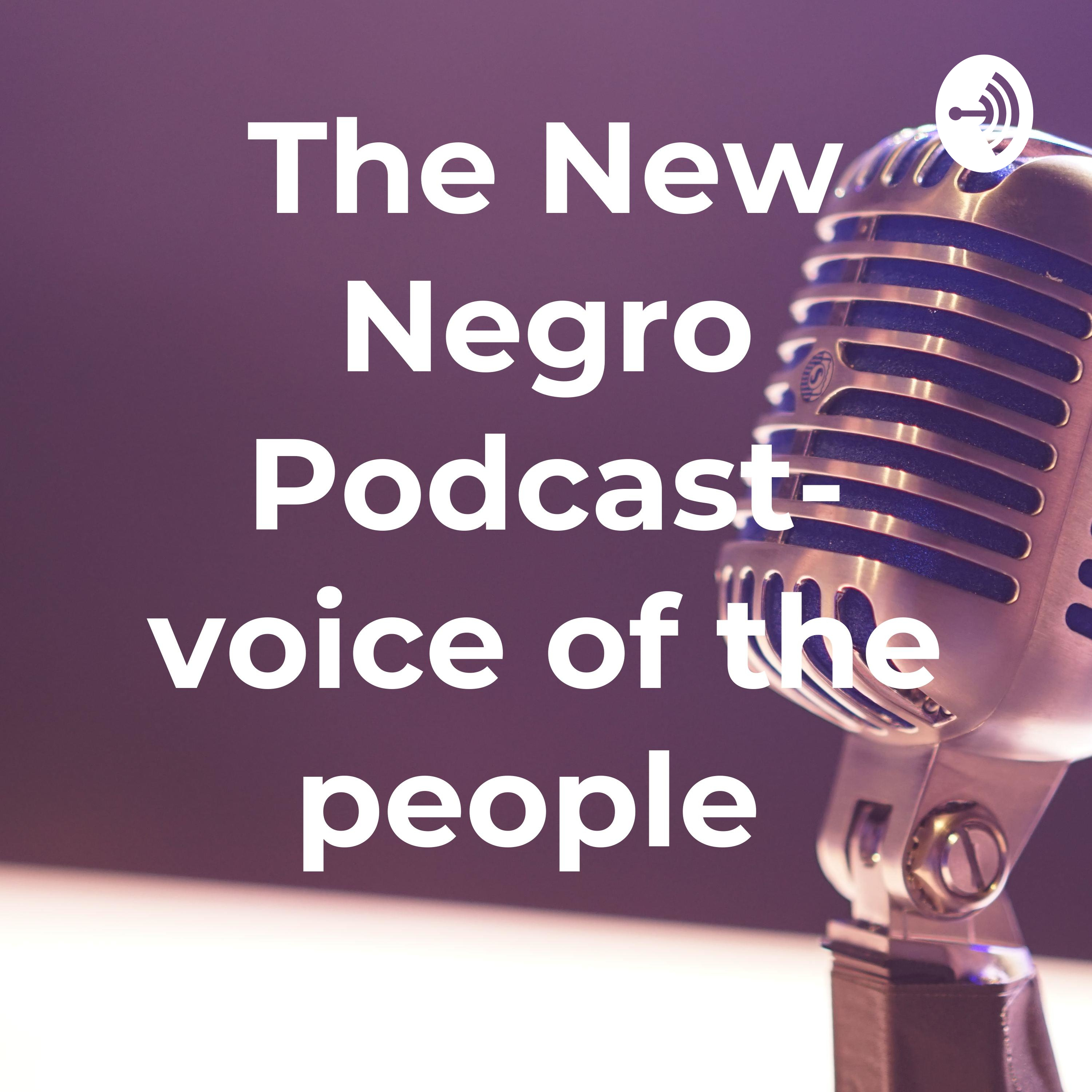 The New Negro Podcast /the Voice For The People
