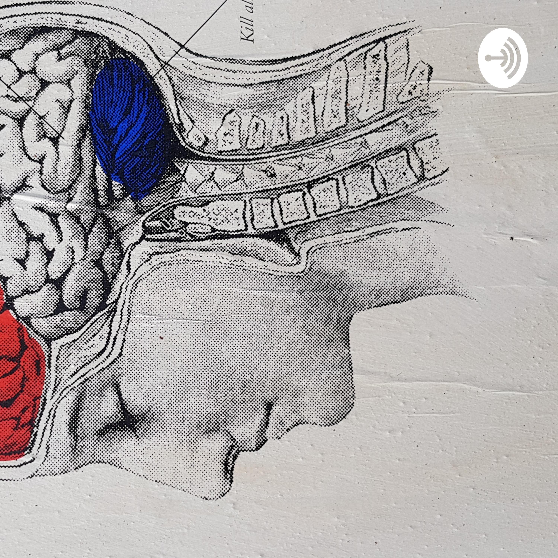 Muzak | Listen via Stitcher for Podcasts