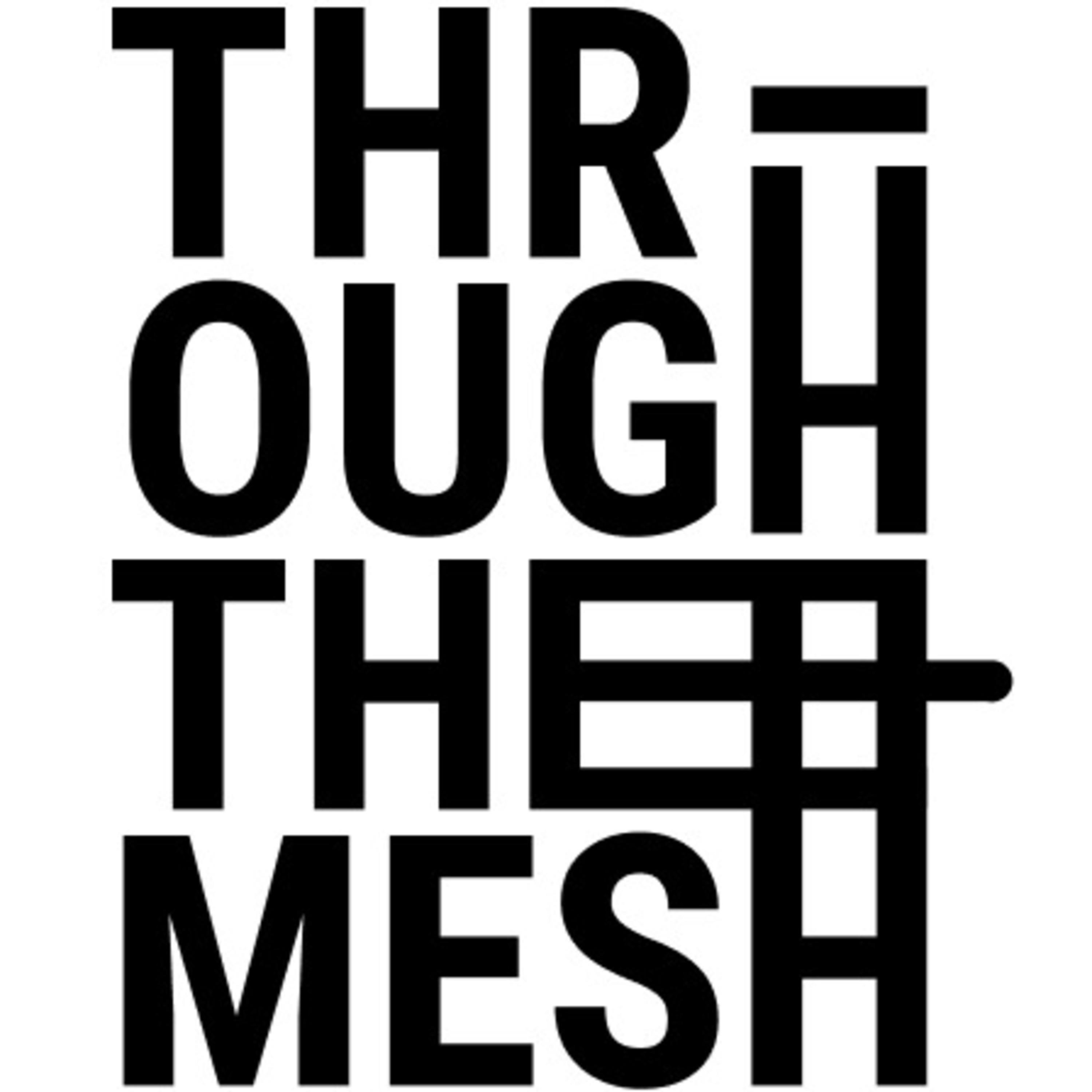 Through the Mesh Podcast on Jamit