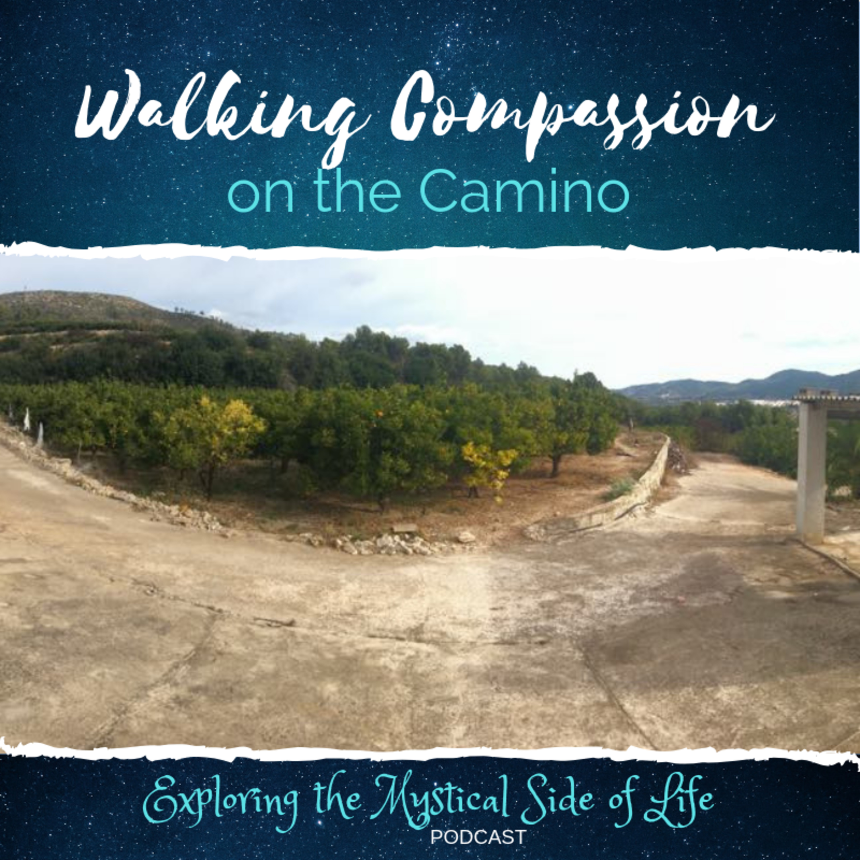 Walking Compassion on the Camino