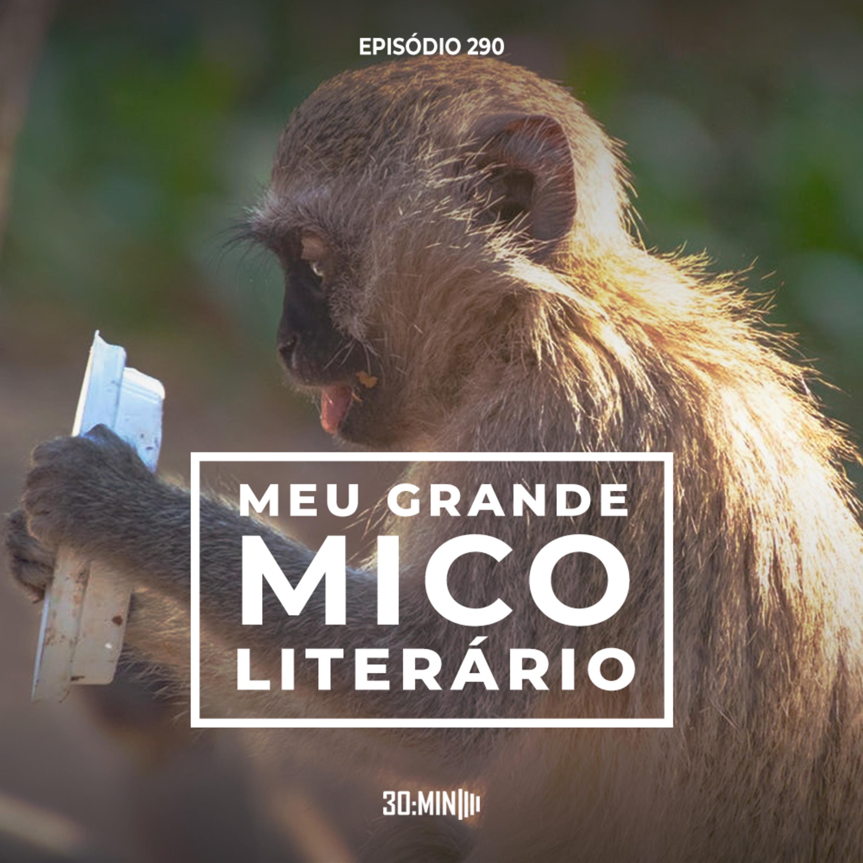 290 – Meu Grande Mico Literário