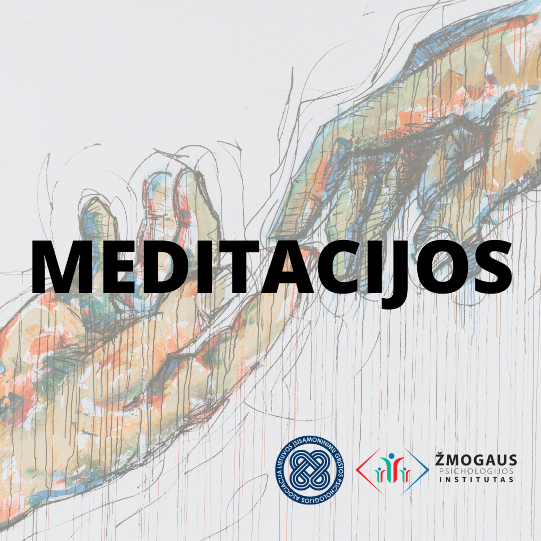 Saugios vietos meditacija. Dr. Julius Neverauskas
