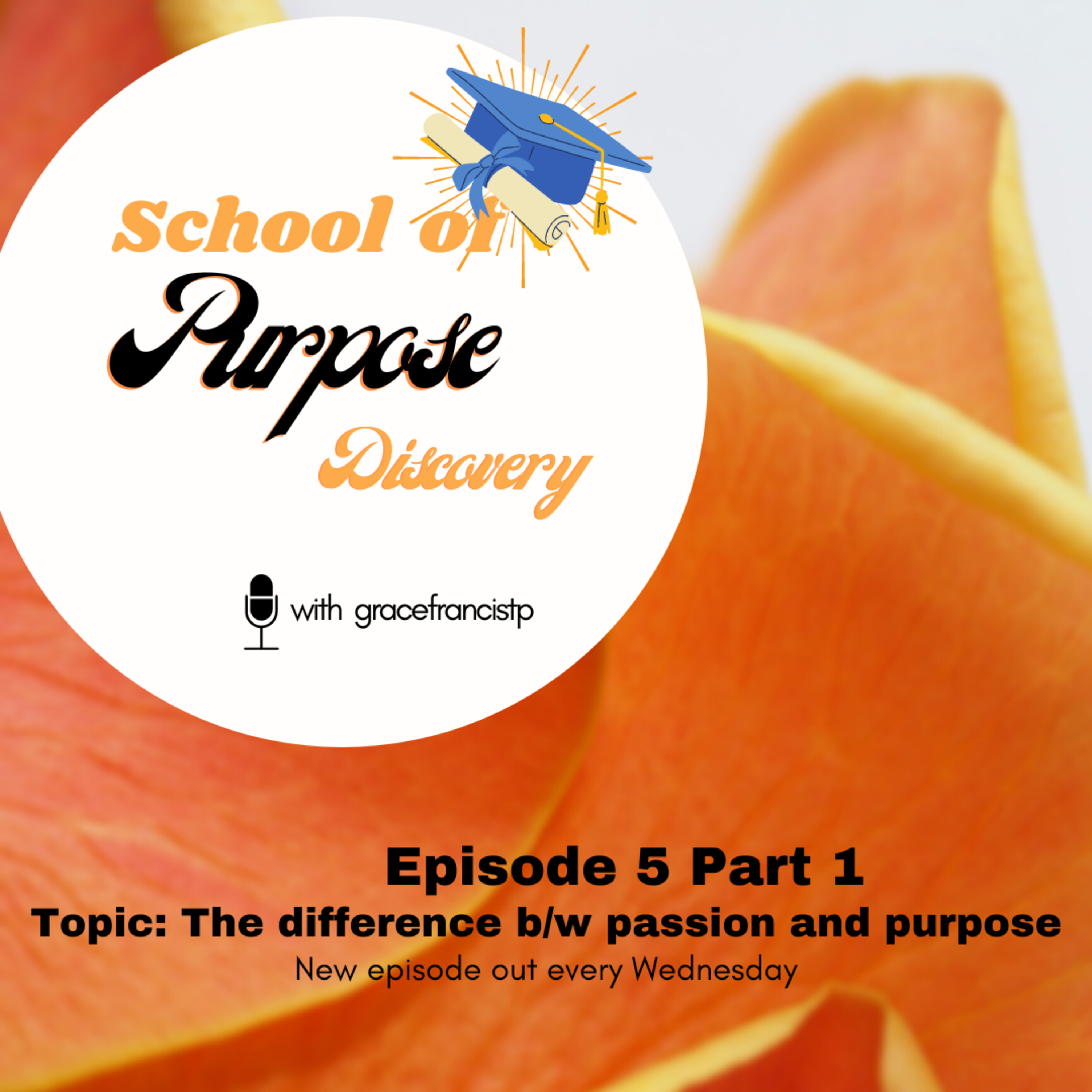 School Of Purpose Discovery on Jamit