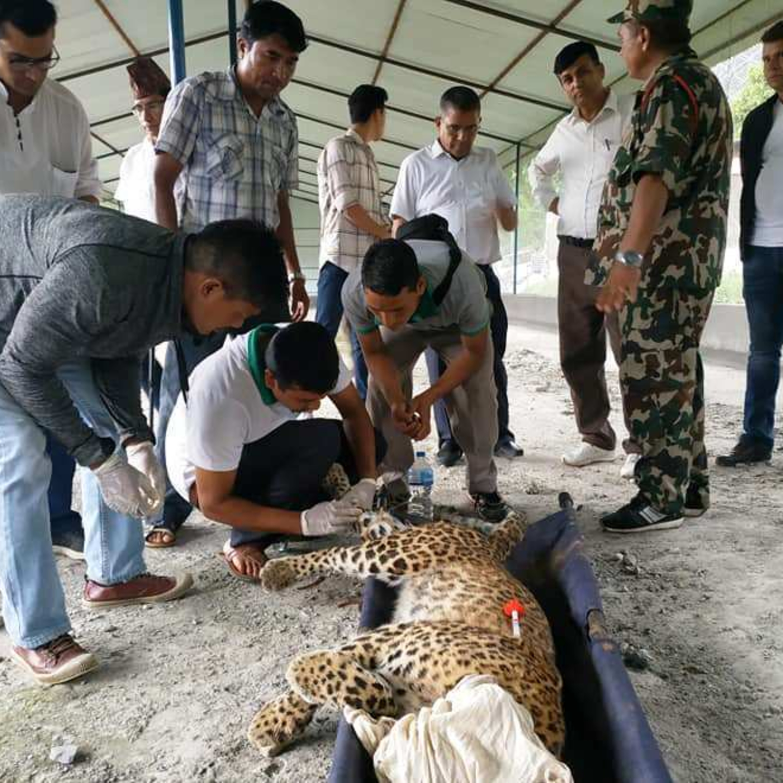 Pokhara News: July 18, 2019 (पोखरा समाचार)