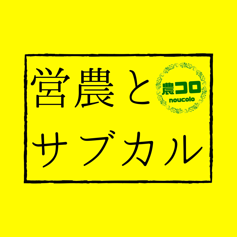 営農とサブカル 「アニメ『モノノ怪』と生理障害」