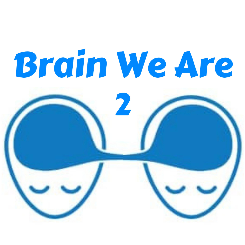 2: Mozek a Jak Nejjednodušeji Změnit Svět