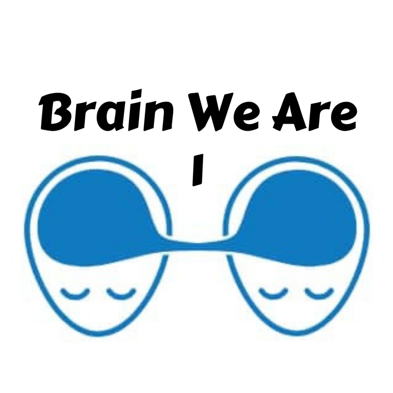1: Sebe-Optimalizace a Mind-Set
