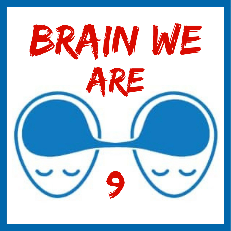 9: Opičí Mysl a Meditace