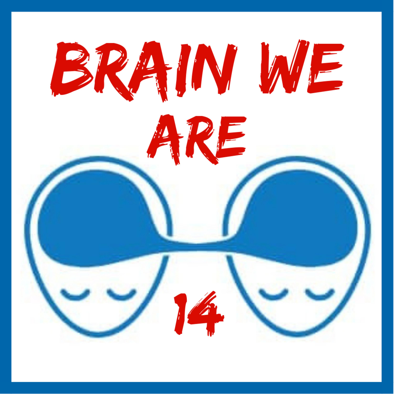 14: Kritické Myšlení, Otevřenost a Předpojatosti Mysli