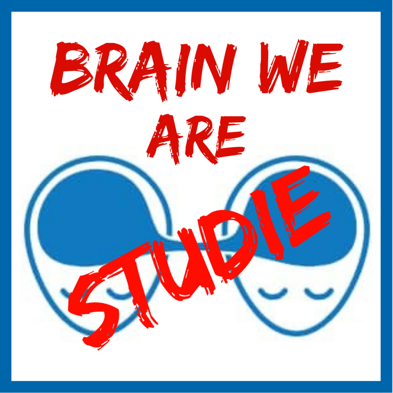 Studie: Jak mozek trénuje kuráž?