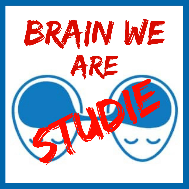 Studie: Meditace - Rozpoznávání chyby a regulace stresu