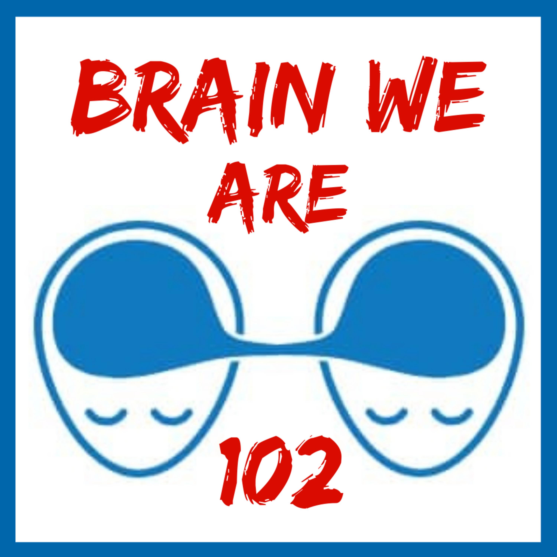102: Tomáš Mikolov - Co je ten nejzajímavější problém, který může lidstvo vyřešit? Umělá Inteligence, Google Překladač a Výzkum