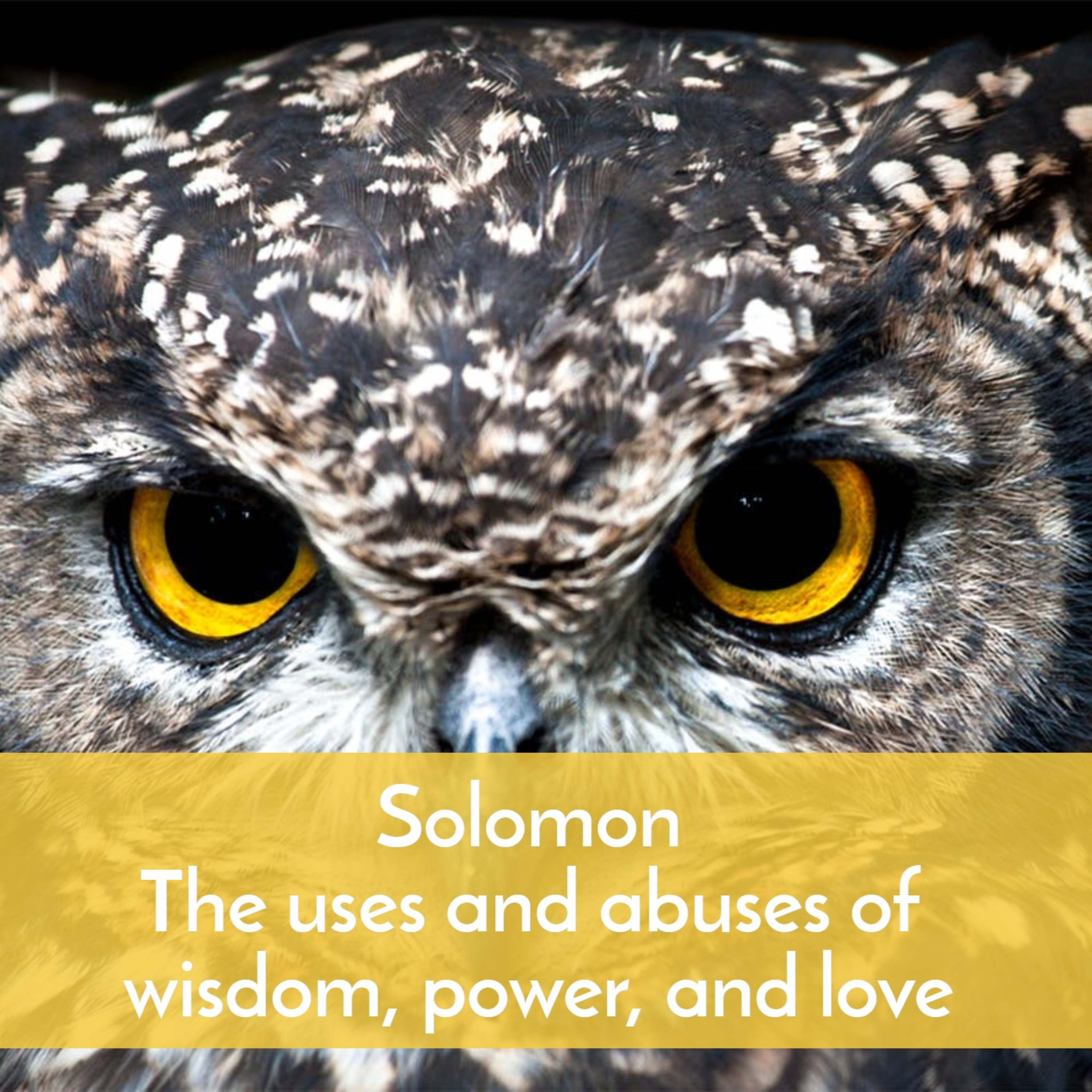 #34 Solomon—the uses and abuses of wisdom, power, and love
