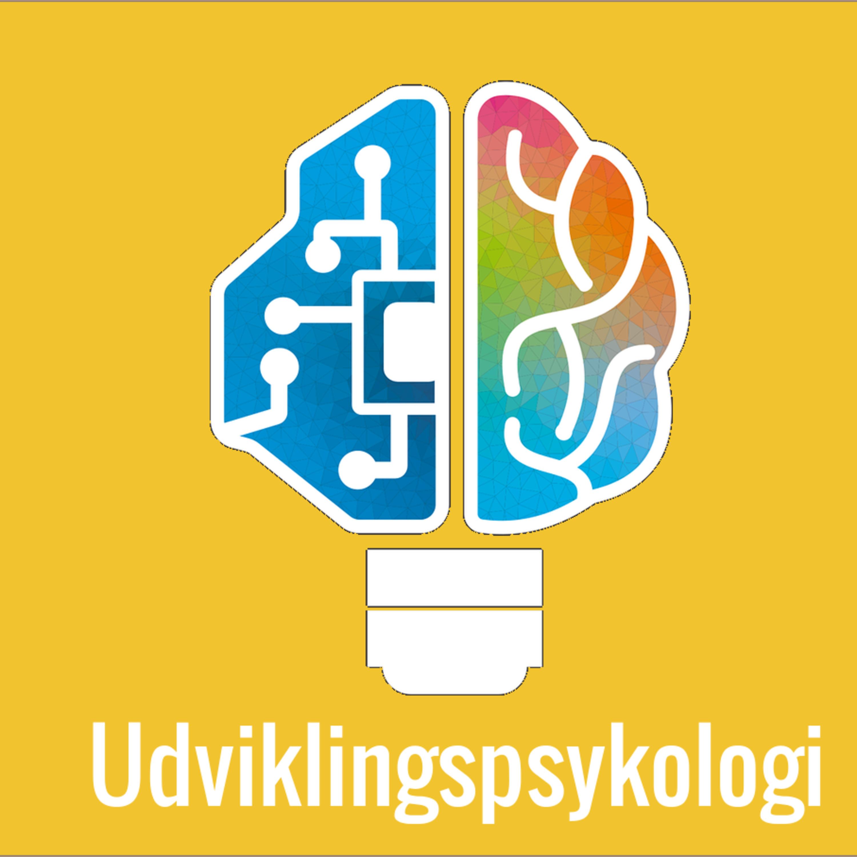 34: Udviklingspsykologi