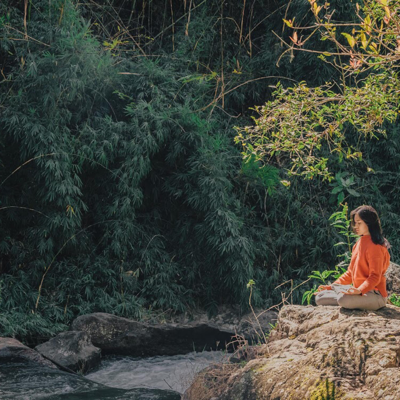 Meditație #9 - Conexiune cu natura