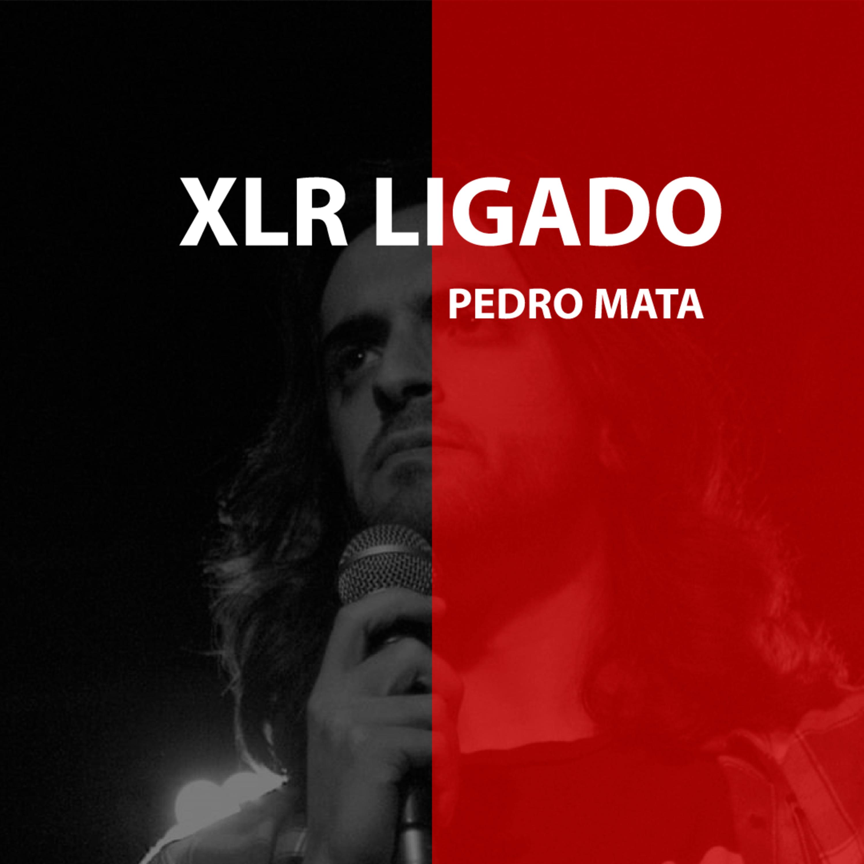 T3 #3 Pedro Mata