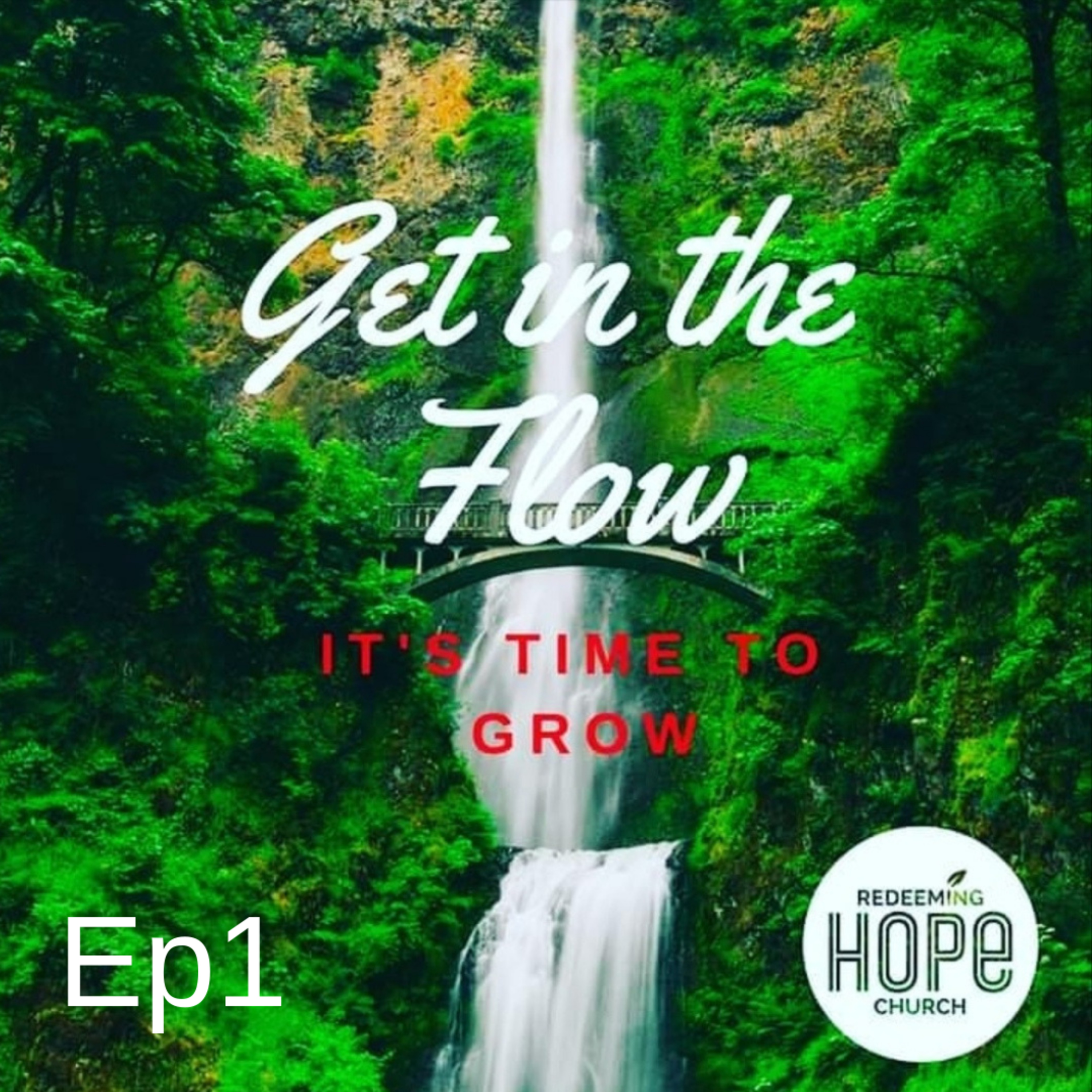 Get In the Flow, It's Time To Grow, Episode 1