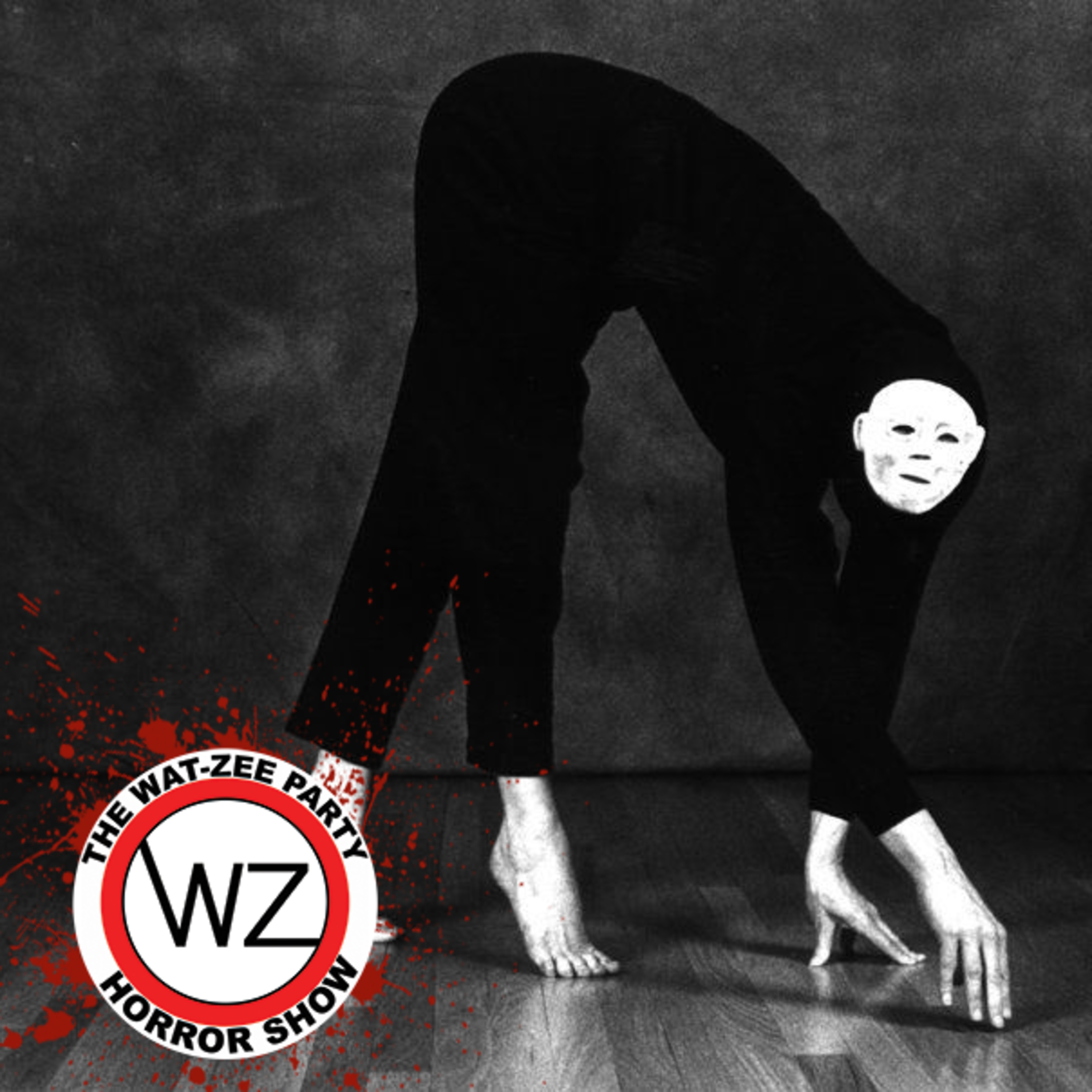 THE WAT-ZEE PARTY HORROR SHOW 013: The Poughkeepsie Tapes (2007)