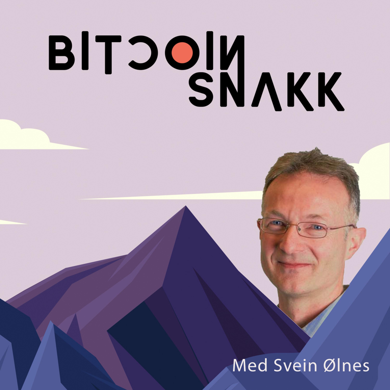 #4 Forsker Svein Ølnes sammenligner Bitcoin med internett