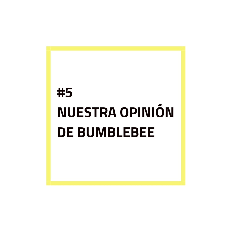 #5 - NUESTRA OPINIÓN DE BUMBLEBEE