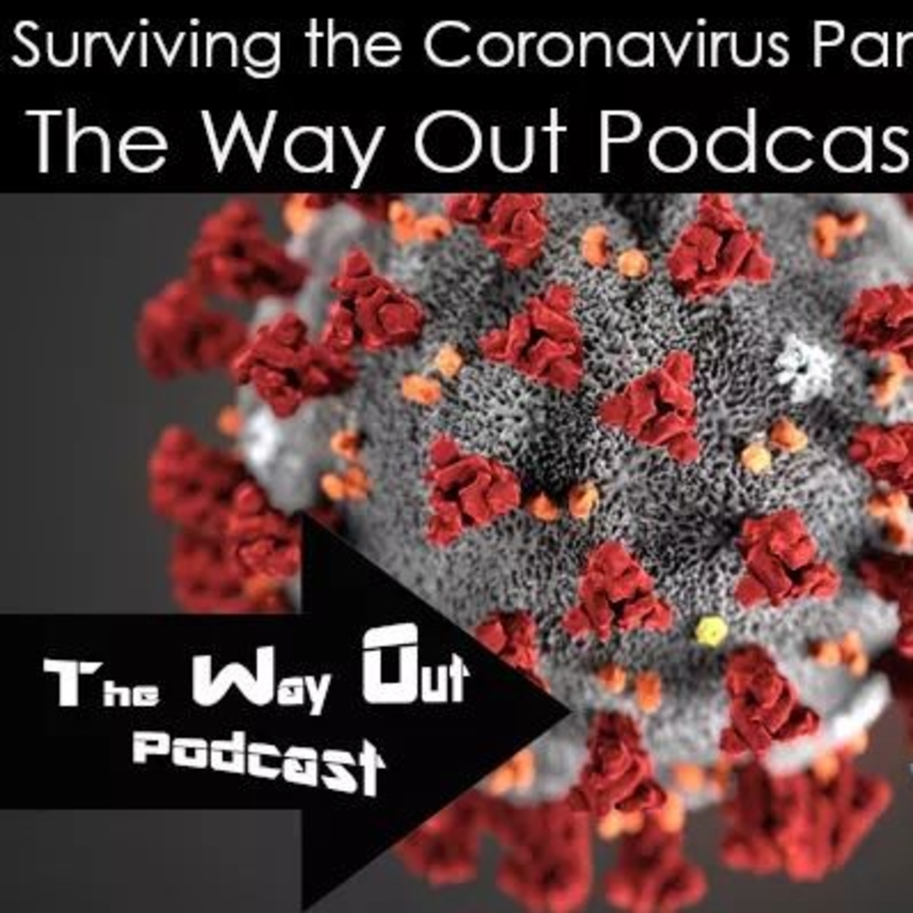 The Way Out | A Sobriety & Recovery Podcast