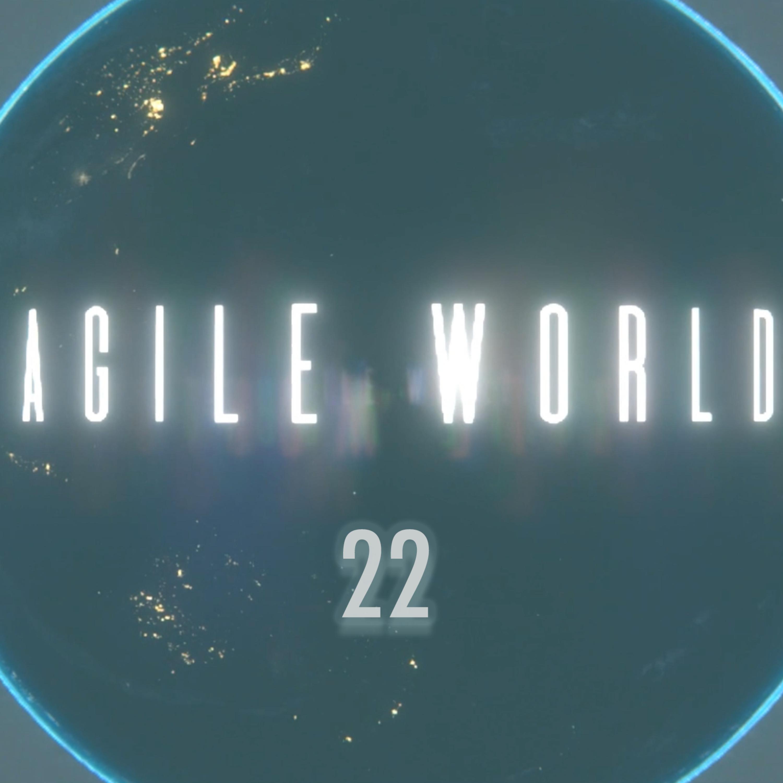 Agile World 22 with hosts Sabrina C E Bruce and Karl Smith on the Agile20Reflect Festival