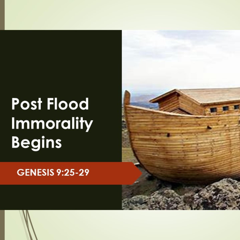 Post Flood Immorality Begins