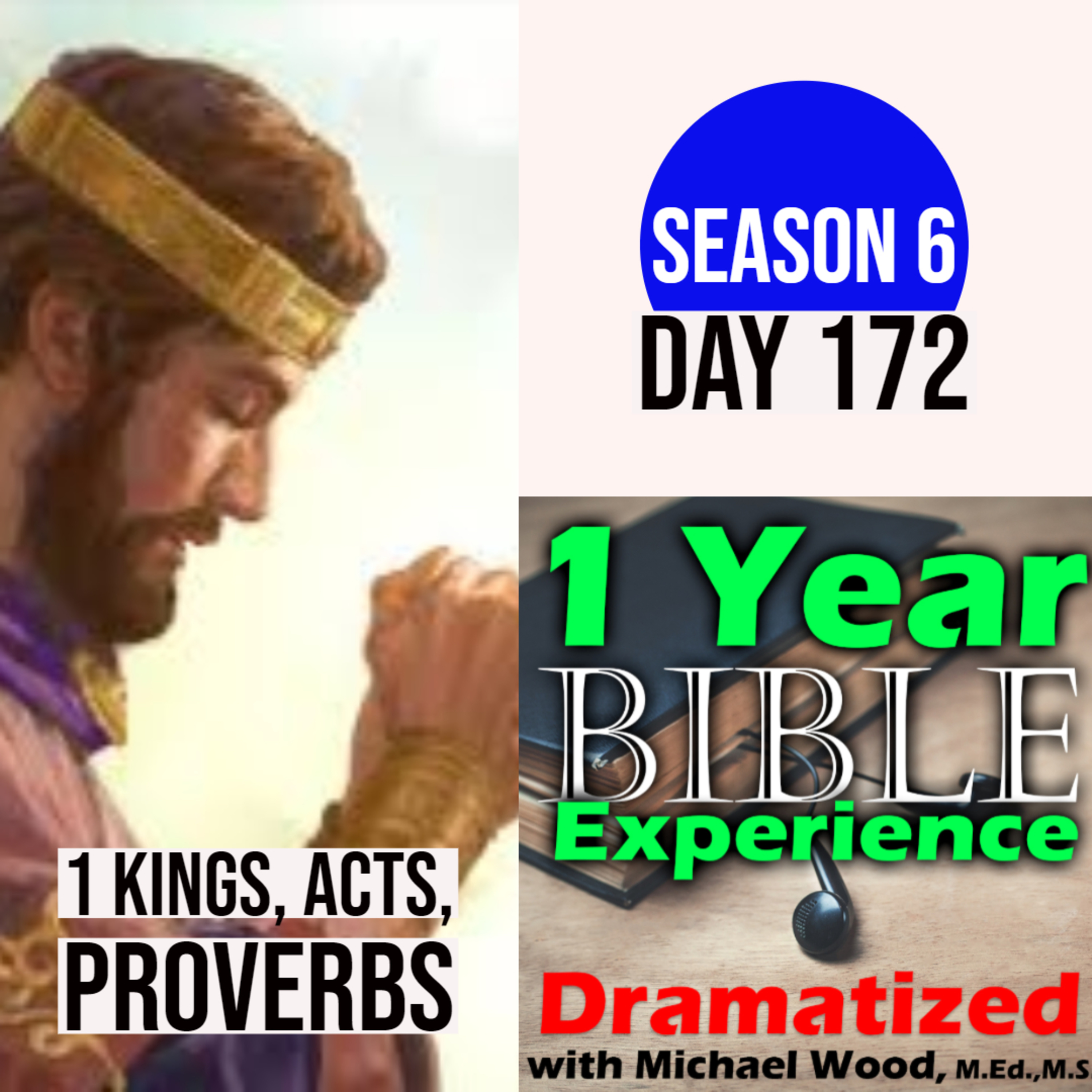 Audio Bible Day 172 | Solomon prays to the Lord and He