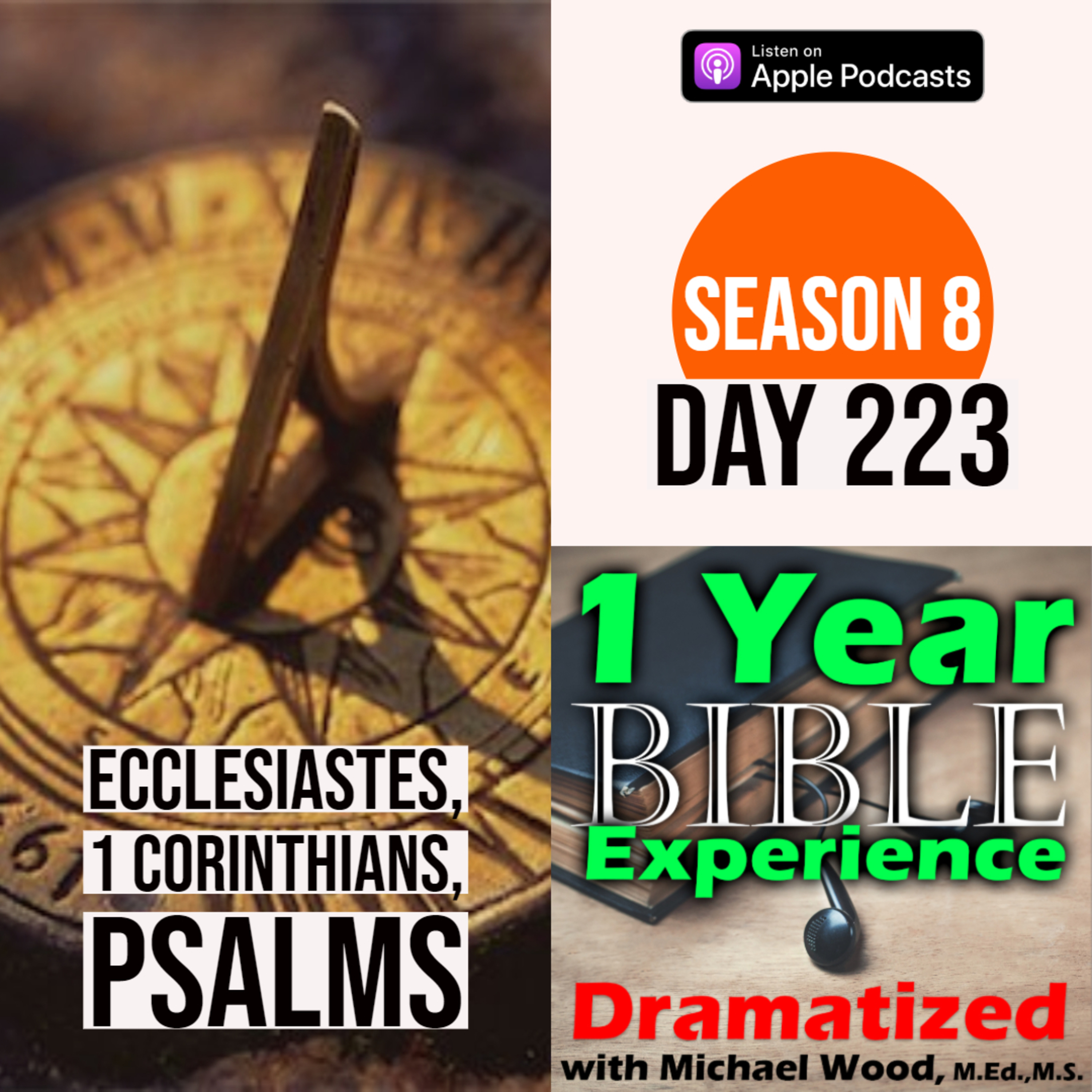 Audio Bible Day 223 | Solomon reflects on the meaning of life | 1 Corinthians 7: Marriage vs Celibacy