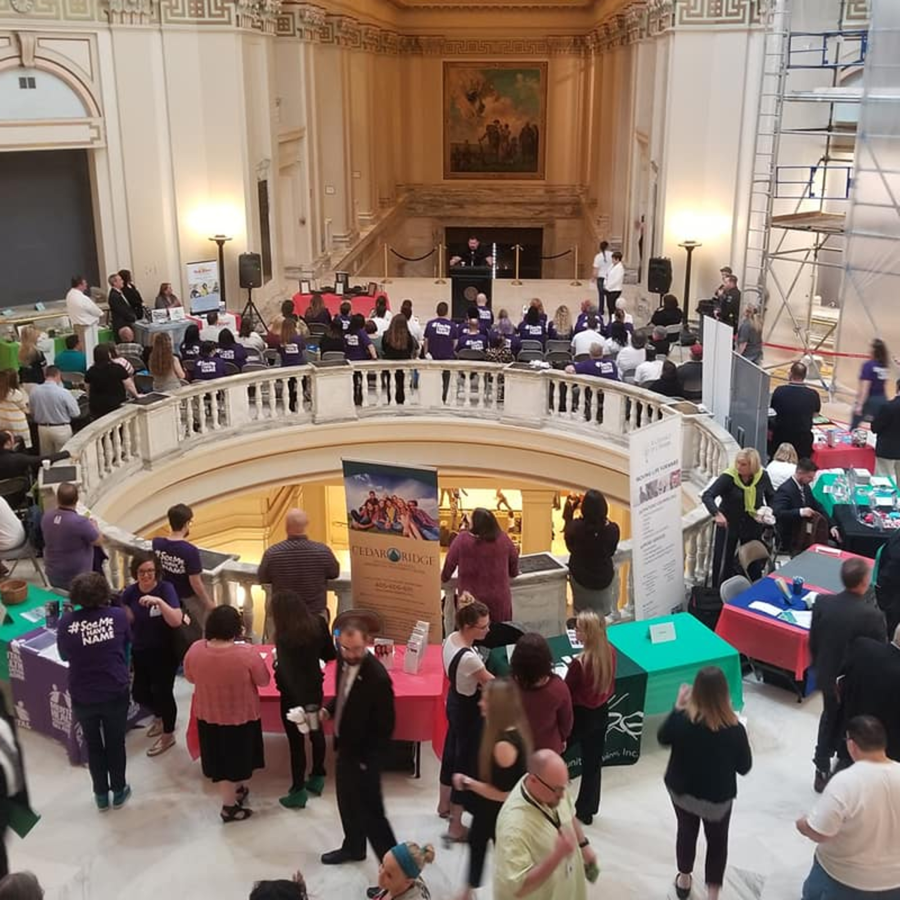 Mental Health Download: Exploring Mental Illness, Suicide, Homelessness and Incarceration - Highlights from the My Mind Matters Rally at the Capitol
