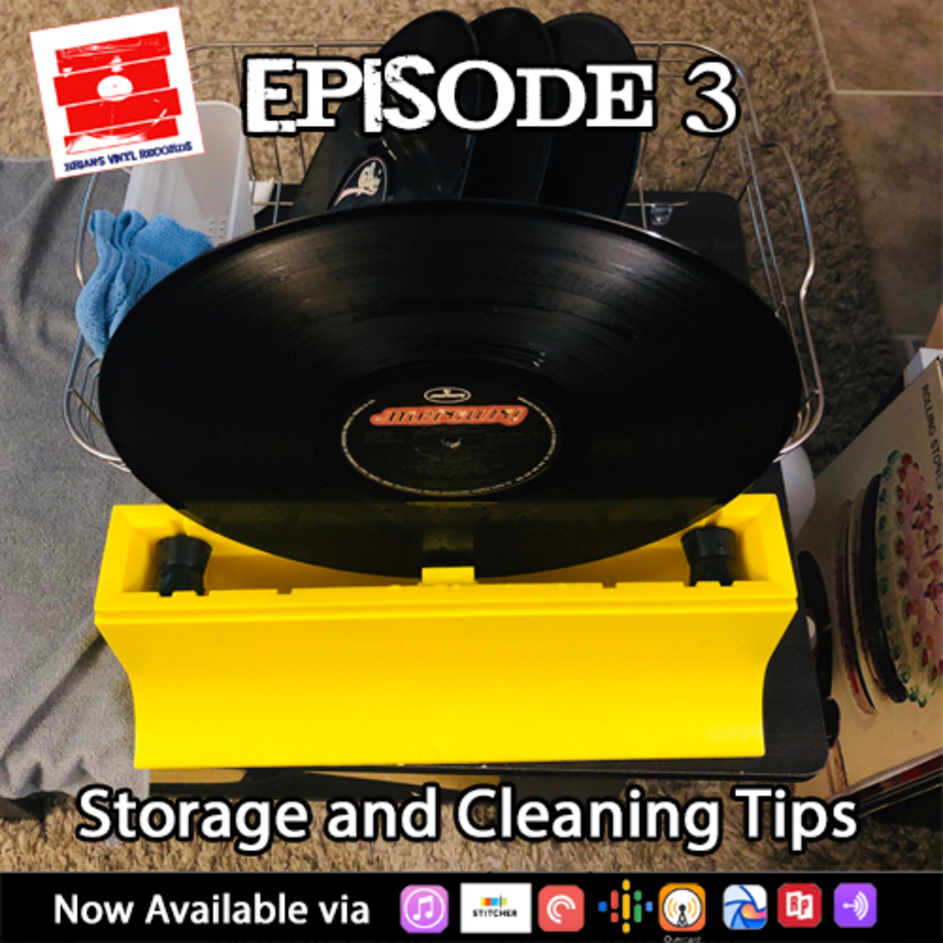 Vinyl Storage and Cleaning Tips