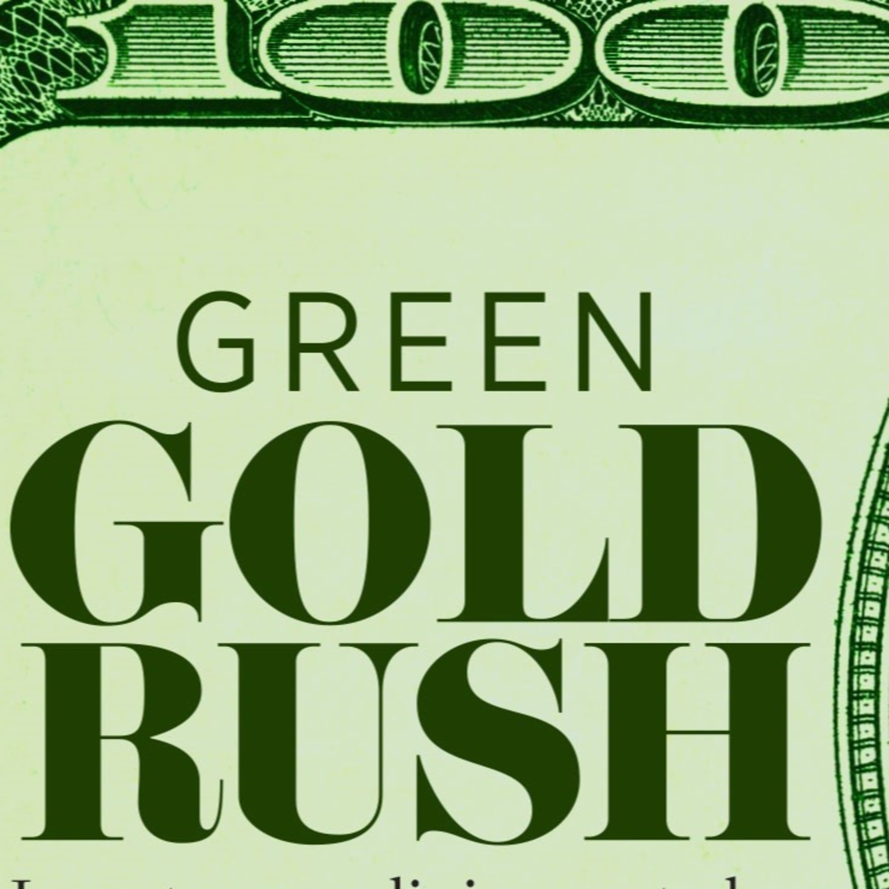 Why 'Green finance' is just socialising risk and privatising profit