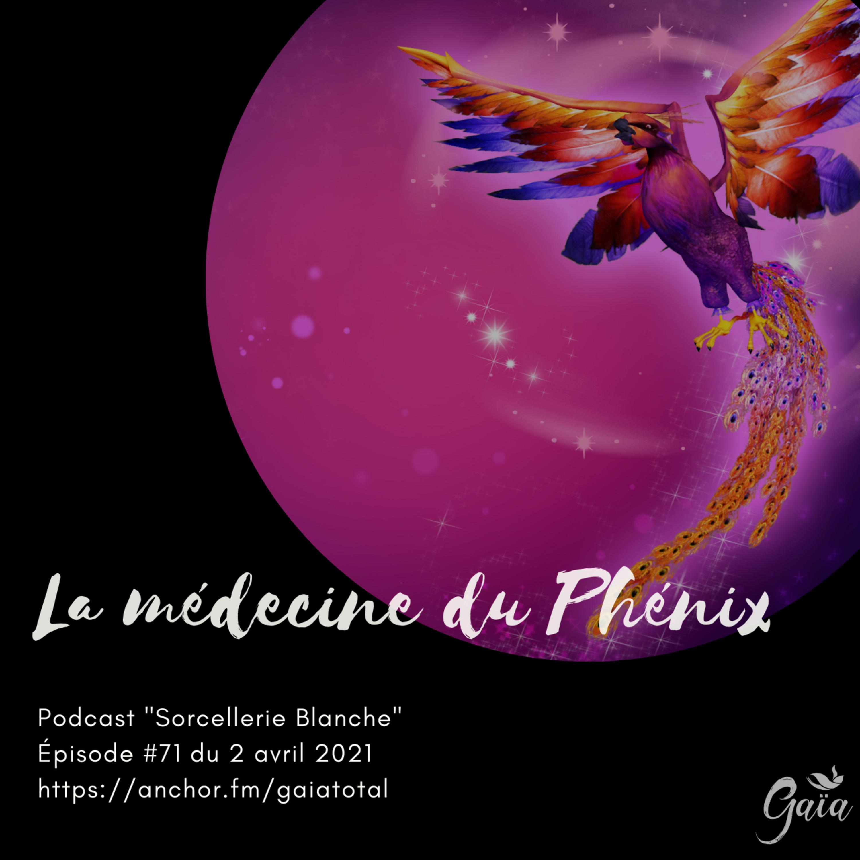 #71 La médecine du Phénix