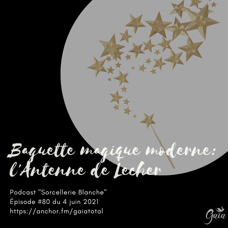 #80 Baguette magique moderne: l'Antenne de Lecher